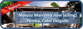 Imobiliaria da Praia Moçambicana